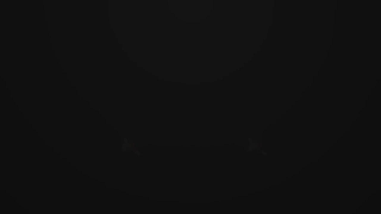 /videodetail.xhtml?id=4885.0